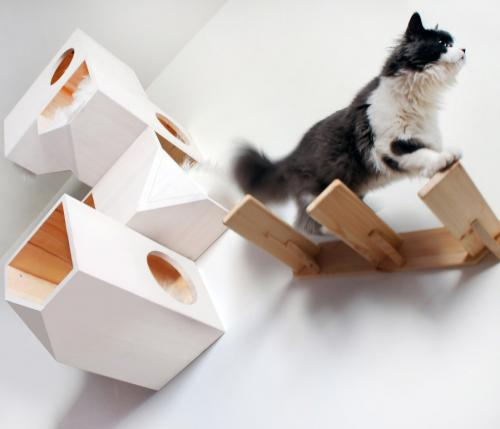 Catissa cat tree provides your cats their own private place to play and sleep