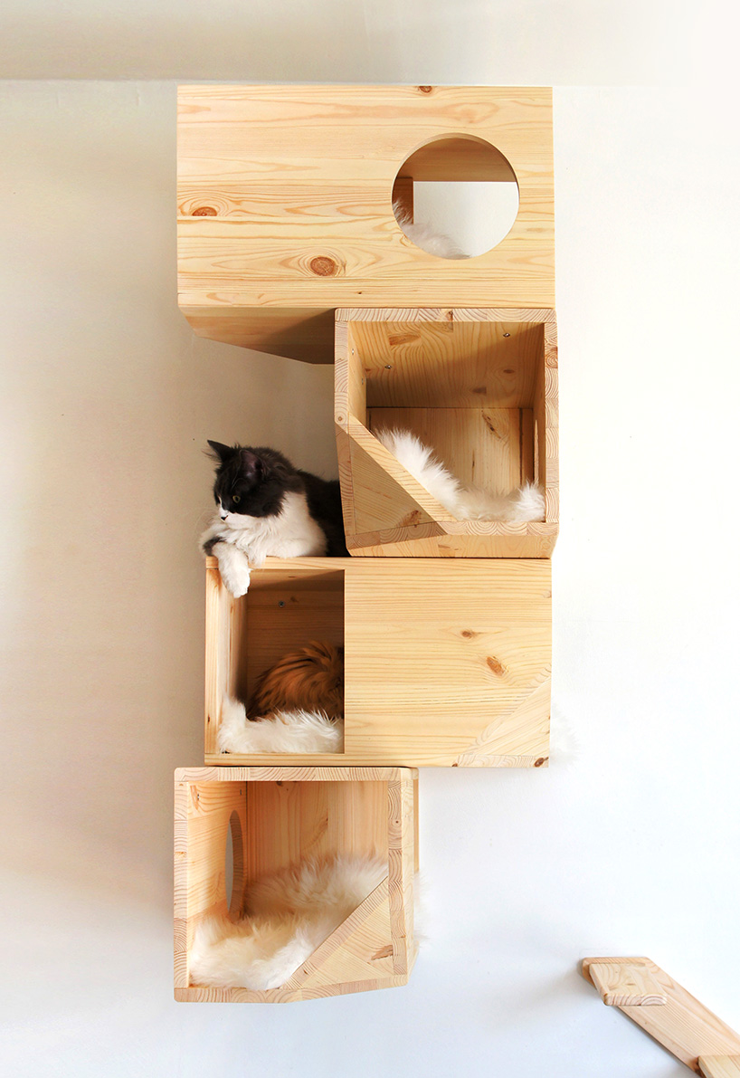 Catissa cat tree provides your cats their own private for Design your own cat tree