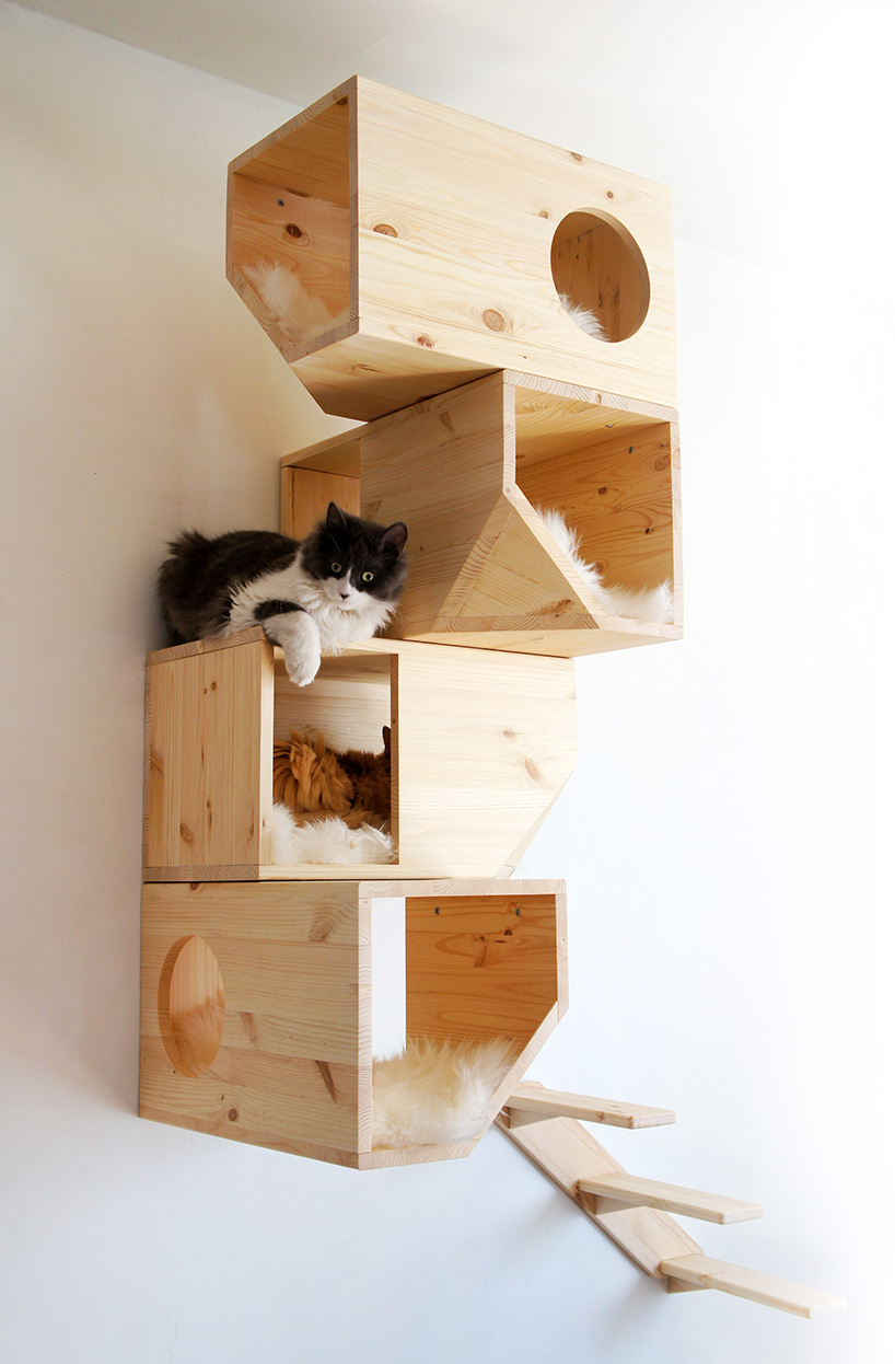 Catissa Cat Tree Provides Your Cats Their Own Private